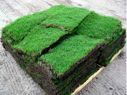 THE GRASS MAN - Grass for Sale
